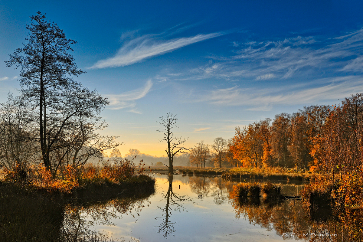 De Wittsee