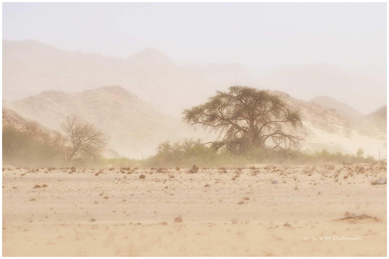 Sandsturm in Hoanib
